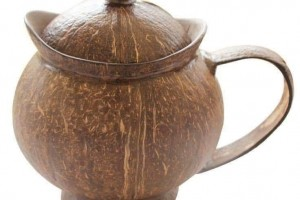 Pot made with coconut