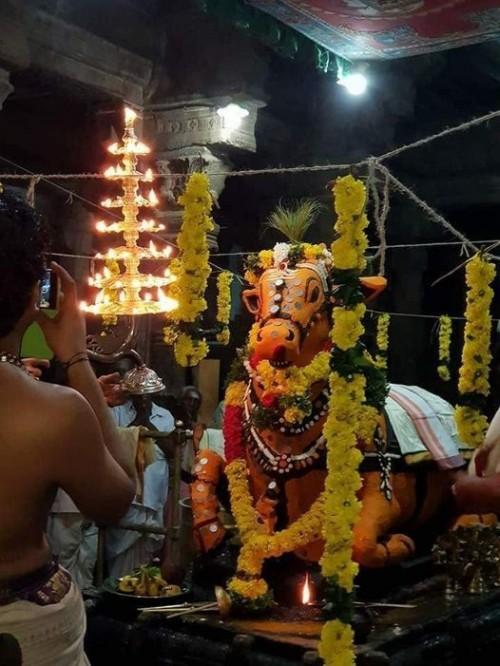 இன்று செல்வத்தை ஈர்க்கும் புதன்கிழமை பிரதோஷம்!